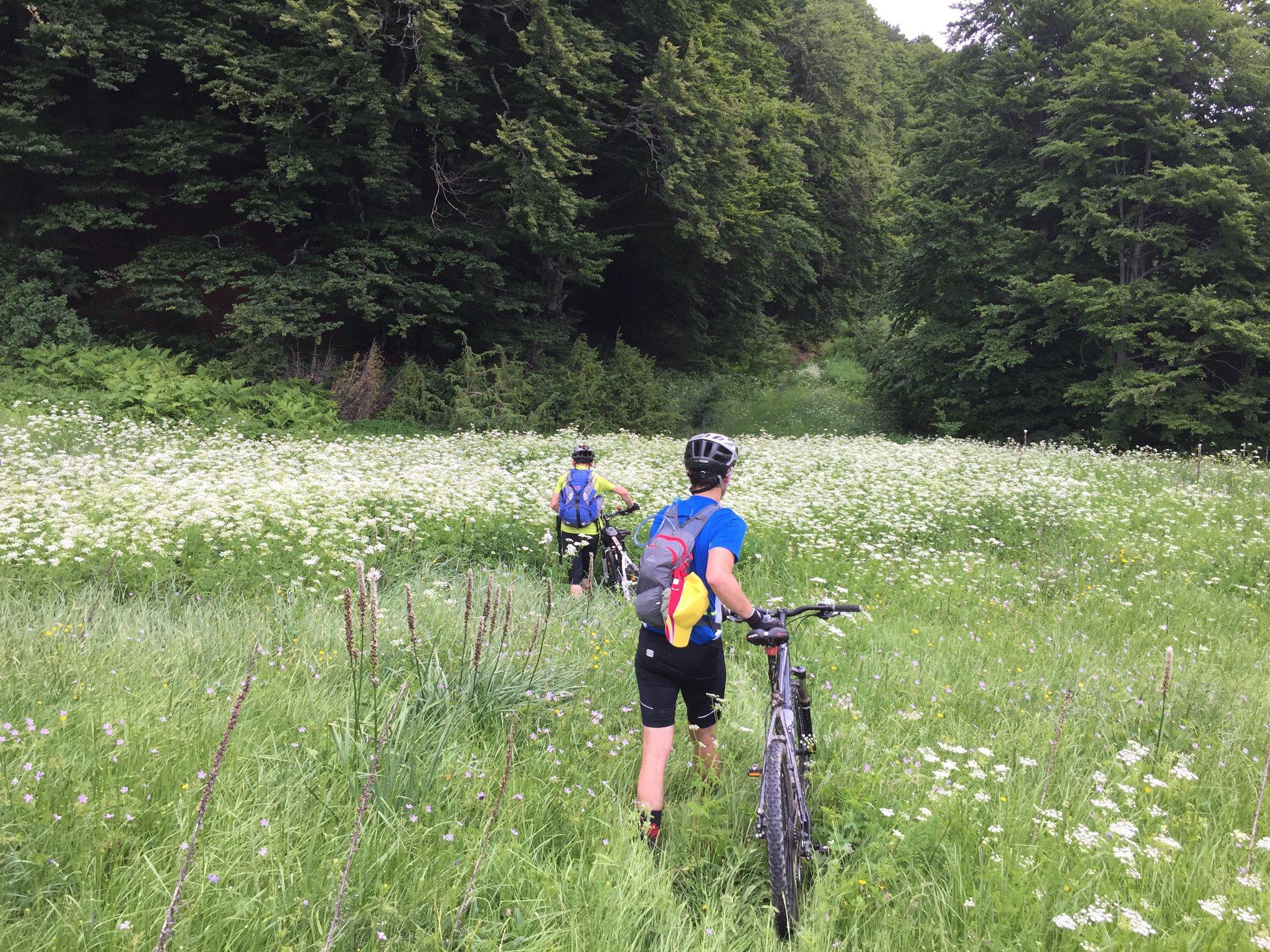 Велосипедска Тура: Славеј Планина-Караорман, Дебрца