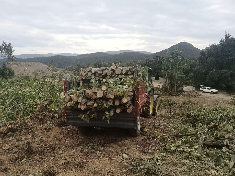 """ОУ """"Дебрца"""" доби донација од 150 м³ дрво за огрев"""